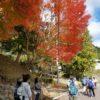 【参加報告】美杉町上多気地区集落と北畠神社庭園をノルディックウォーキング 【レッ津!ノルディック定例会】