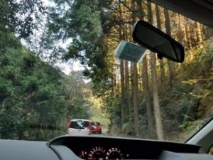 榊原池目指して林道を進む
